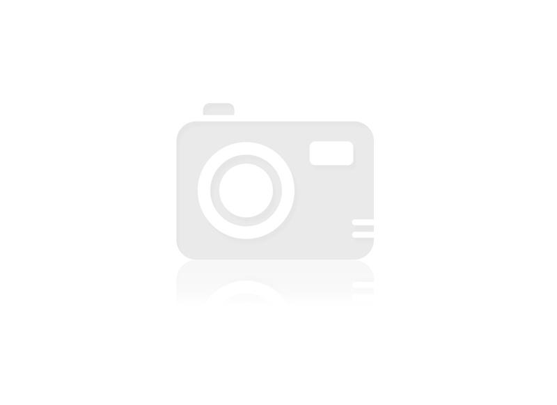 AMORTECEDOR DIANT. LD/LE SYMBOL TDS 09/… ; CLIO TDS 1.6 99/09